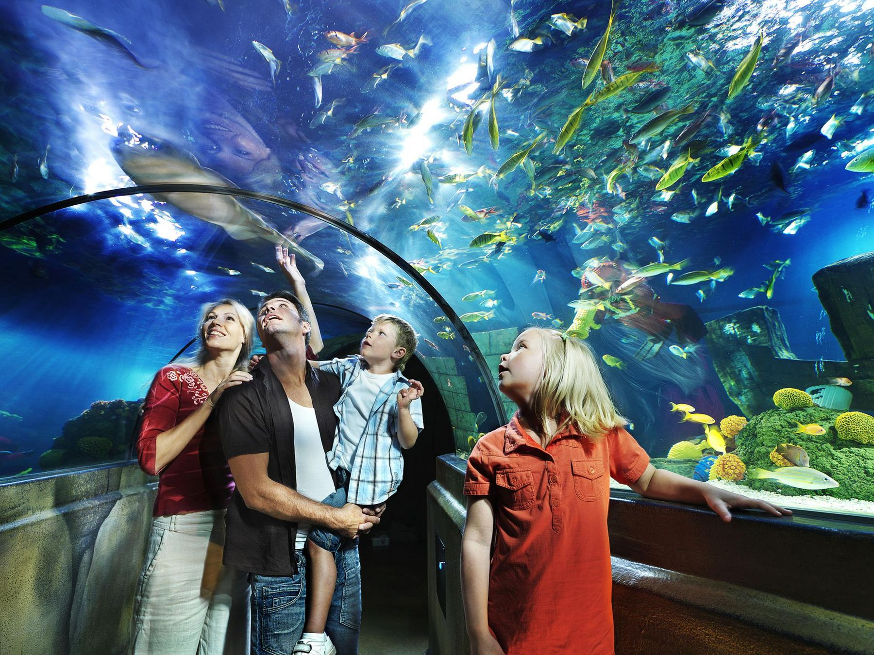 LLD LEGO X treme Atlantis Familie im Glastunnel 02
